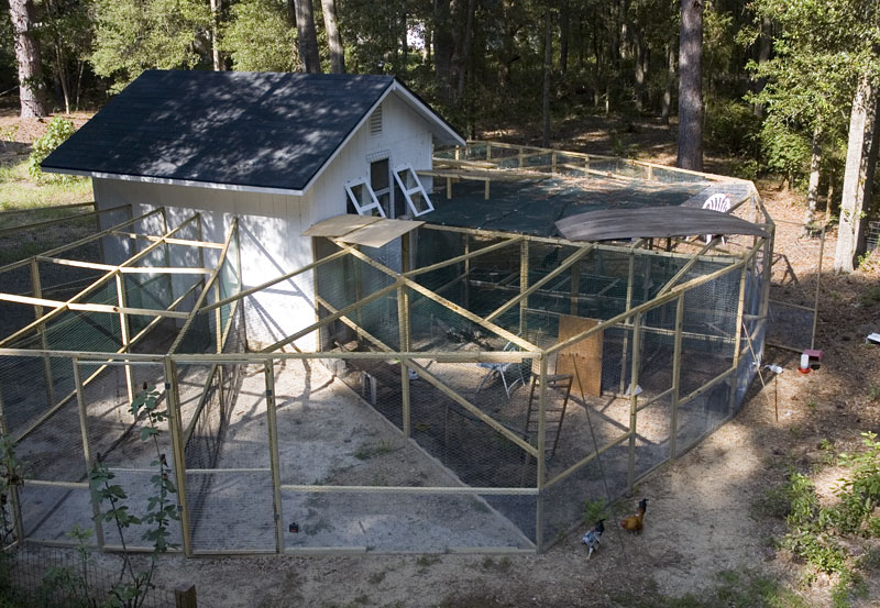 Cheap chicken coops and runs for sale lam chock for Cheap chicken pens for sale